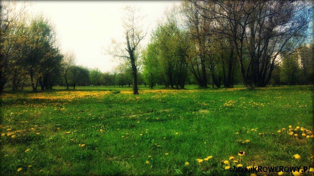 Rower-ciepla wiosna